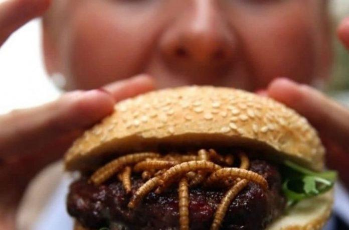 Burger Σκουλήκια